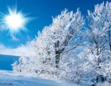 Konkurs fotograficzny -Zima w mojej okolicy